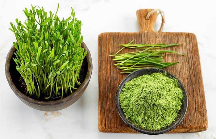 39 parimat Wheatgrassi pulbri parimat kasu nahale, juustele ja tervisele