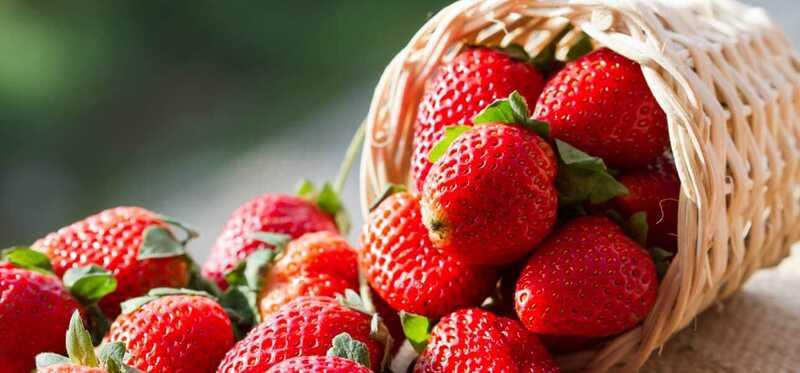 15 najlepších zdrojov antioxidantov