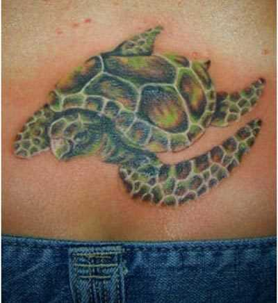 Beste Turtle Tattoo Designs - unsere Top 10