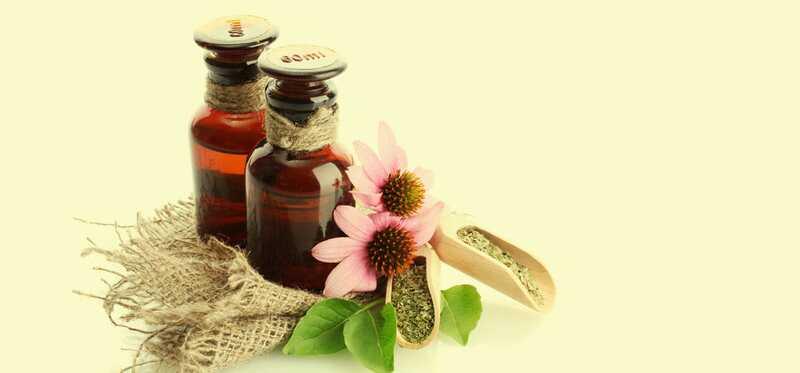 10 Farlige bivirkninger af Echinacea