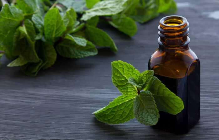 10 Nebezpečné vedľajšie účinky oleja z mäty piepornej