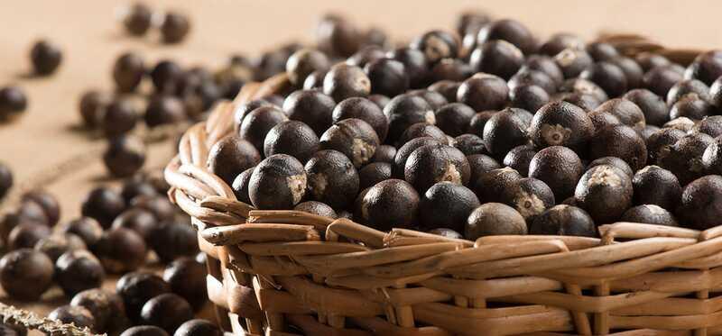 29 fantastiske fordeler og bruk av Acai Berries (Karvandha) for hud, hår og helse