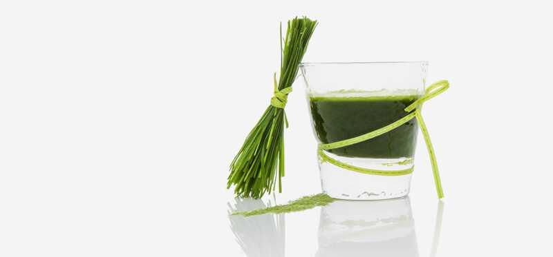 15 úžasných prínosov šťavy z jačmennej trávy