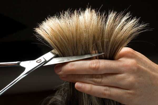 Mastná pokožka hlavy a krehké konce - Ako liečiť?