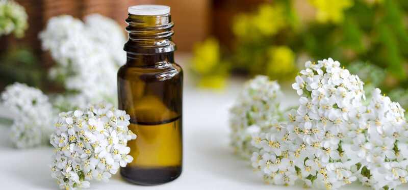 10 fantastiske sundhedsmæssige og skønhedsmæssige fordele ved Yarrow æterisk olie