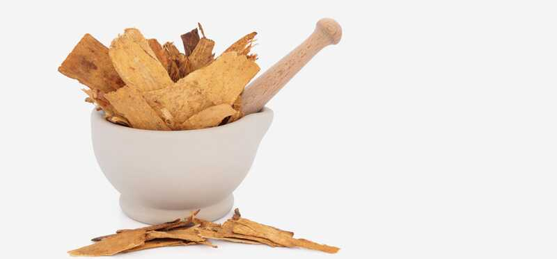 16 úžasných prínosov zdravia Astragalus Root