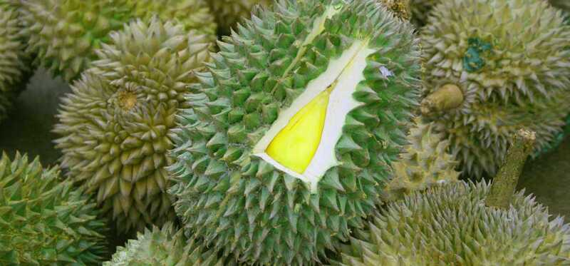10 nuostabių vaisiaus durianų privalumų