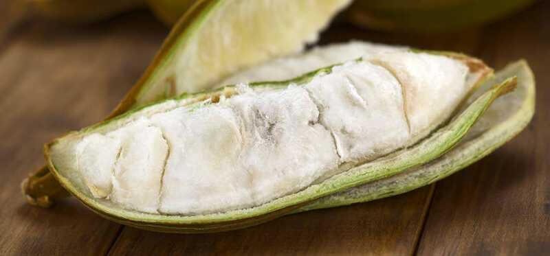 10 fantastiske sundhedsmæssige fordele ved isbønnefrugter
