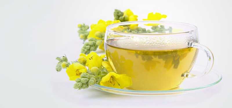 10 fantastiske sundhedsmæssige fordele ved Mullein te