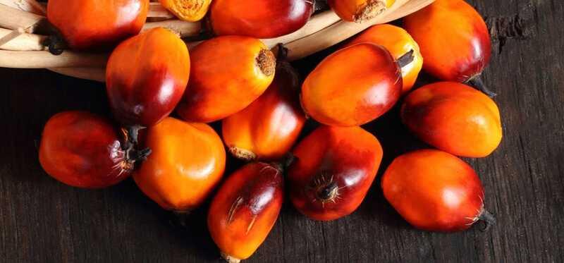 10 increïbles beneficis per a la salut de Peach Palm Fruit