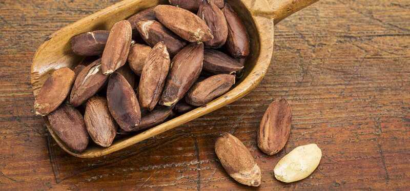7 úžasné zdravotné prínosy Pili Nuts