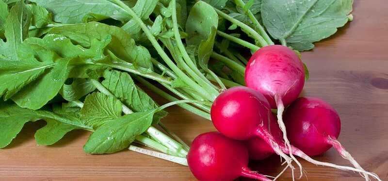 10 úžasných zdravotných prínosov z listov ríbezle (Mooli Ke Patte)
