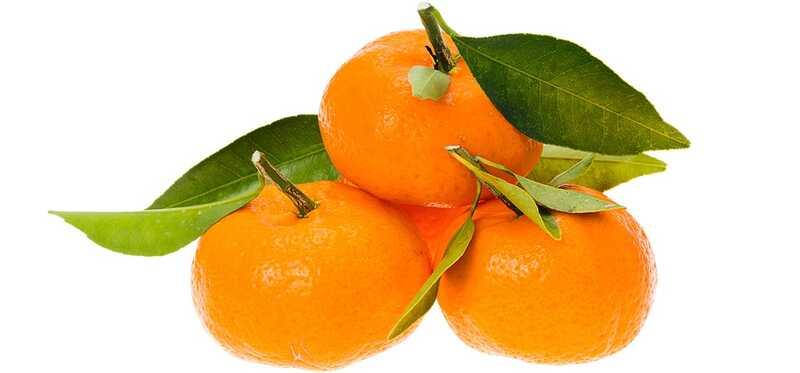 10 úžasných zdravotných výhod Satsuma pre pokožku, vlasy a zdravie
