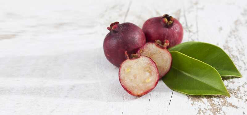 10 úžasných zdravotných výhod Strawberry Guava