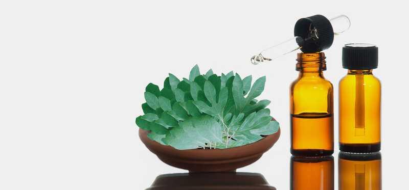 10 Liečivé použitie oleja Sassafras pre pokožku a zdravie
