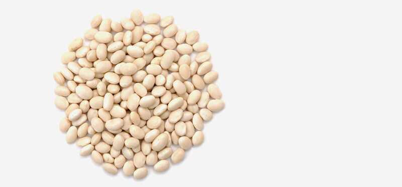 7 úžasných výhod Navy Beans pre vlasy a zdravie pokožky