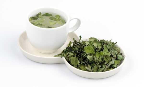 Moringa te - Sådan forberedes og hvad er dens fordele?