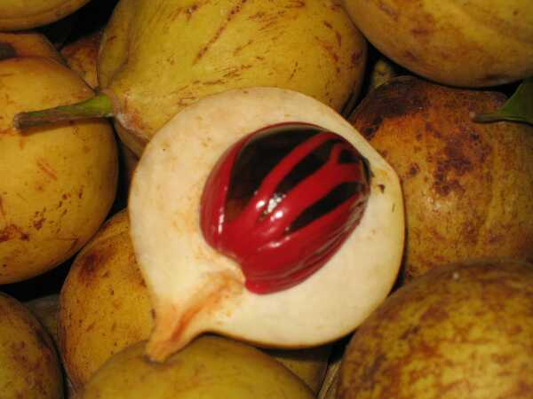 15 úžasných výhod muškátového orecha (Jaiphal)