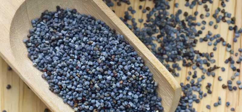 15 úžasných prínosov makových semien (Khus Khus)