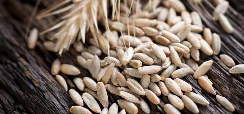 11 úžasných prínosov žita pre pokožku, vlasy a zdravie