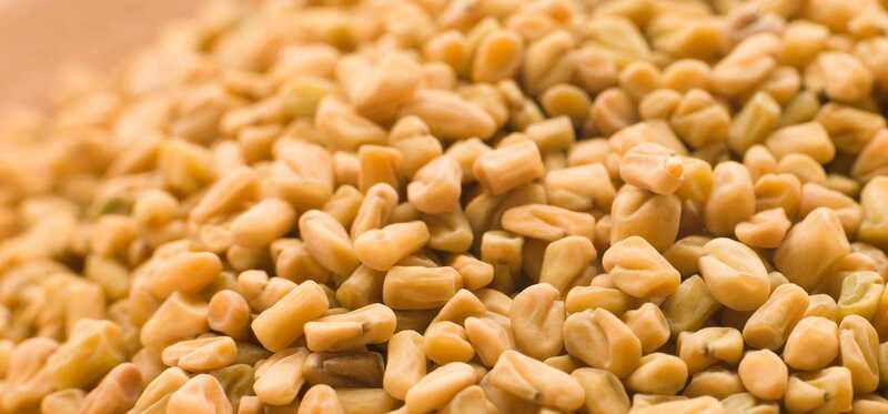8 vedľajších účinkov Semeno sena, ktoré by ste si mali byť vedomí