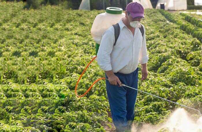 2 enkle tricks til at fjerne pesticider fra frugter og grøntsager!