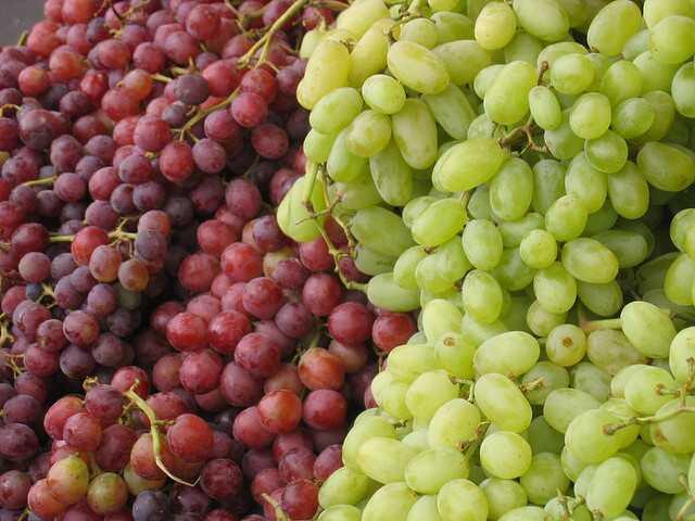 10 bedste frugter til sundhed