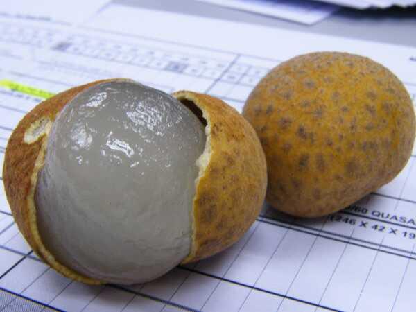 Top 10 úžasné zdravotné prínosy longan