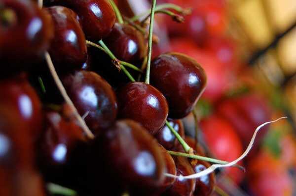 19 nuostabių vyšnių privalumų odai, plaukams ir sveikatai