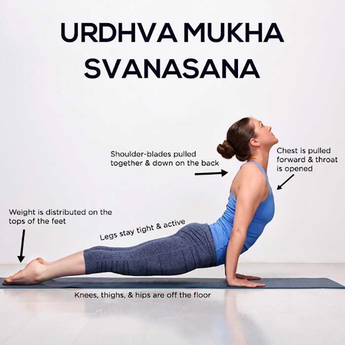 Ako urobiť Urdhva Mukha Svanasana a aké sú jej výhody