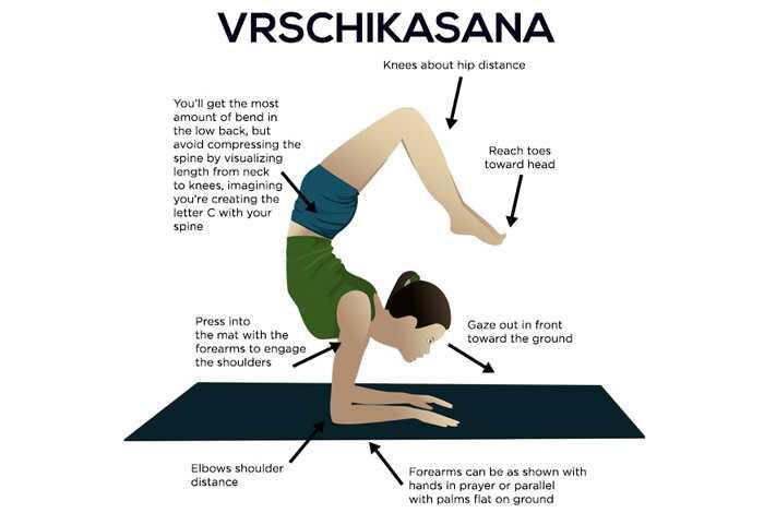 Ako urobiť Vrschikasana a aké sú jej výhody