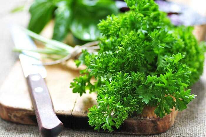 54 úžasné prínosy petržlenu (ajmood) pre pokožku, vlasy a zdravie