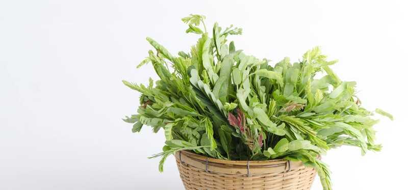 13 fantastiske sundhedsmæssige fordele ved tamarind blade