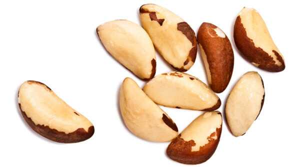 20 najlepších výhod Brazílie orechy pre pokožku, vlasy a zdravie