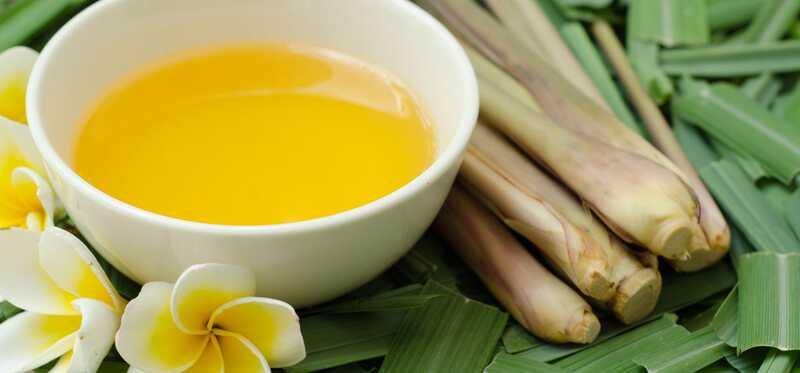 17 neverovatnih prednosti Citronella (Gandhatrina) ulja za kožu, kosu i zdravlje