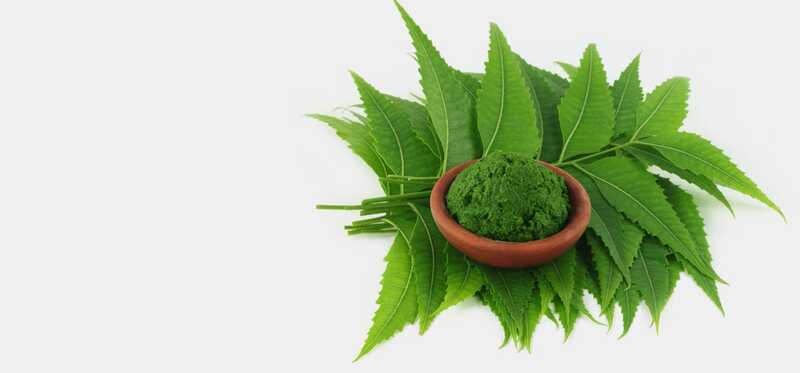 10 increïbles beneficis de Neem Paste a la pell