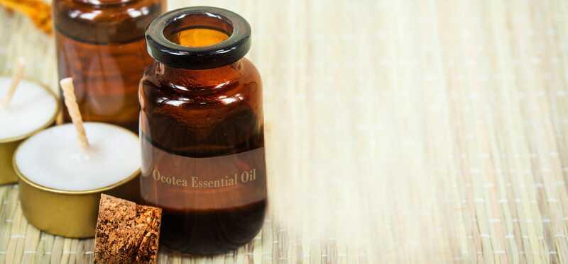 10 fantastiske fordele ved ocotea æterisk olie