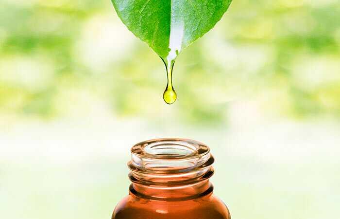 10 úžasných výhod oleja palmového jadra