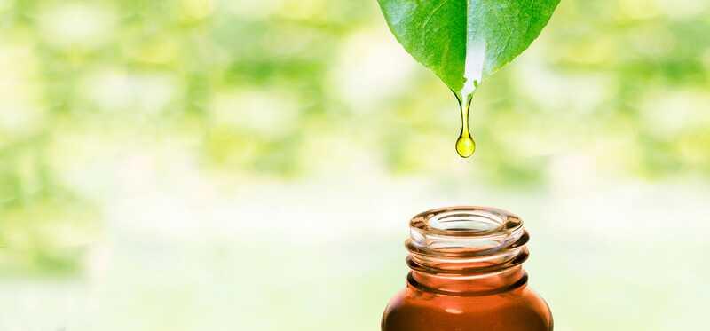 Els 10 beneficis principals de l'oli essencial de Ravintsara
