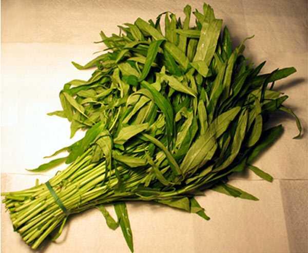21 úžasných výhod Spinachu (Palak) pre pokožku a zdravie