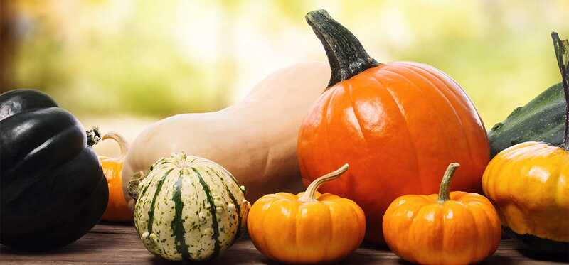 23 fantastiske fordele ved Squash for hud, hår og sundhed