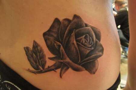 Top 15 Wzorów Tatuażu Rose Plhair Actioncom
